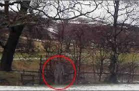fantôme photographié, Angleterre, Colin Foster, étrange, paranormal, forme humaine, experts, surnaturel, Craig Hamilton-Parker, se sentir observé, médium,