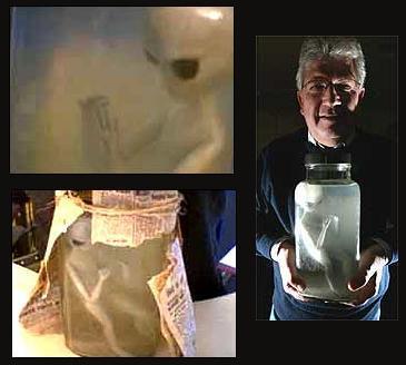 extraterrestre retrouvé dans un bocal, étrange, paranormal, bocal opaque, créature inconnue, hominidé, formol, bébé alien, hypothèse, services secrets, quatre orteils,