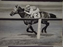 légende, seabiscuit, cheval de course, pur sang, américain, célèbre, livre, film, chronique, animaux, insolite,