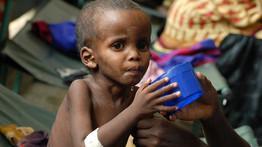 Somaliens, menacés, famine, insurgés islamistes, ONU, souffrance, faim, misère, monde, crise alimentaire, afrique, musulmans, insolite,