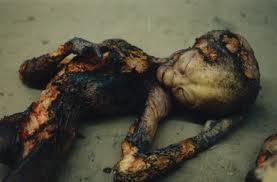 capture extraterrestre, Varginha, Brésil, étrange, paranormal, êtres non-terrestres, ovni, armée, autopsie, aliens décédés, investigations,