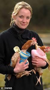 Jo Eglen, vraie mère poule, insolite, chaumière, fait faire des pulls, pas froid, volatiles, confortable, centre de secours, pondeuses, batterie,