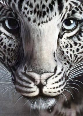 que cache, tête de léopard, insolite, trompe l'oeil, photo, peinture, animal, femme, humour, art,