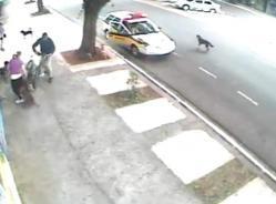 femme attaquée, par un pitbull, insolite, chien, chiens errant, Brésil, caméra, vidéo-surveillance, attaquer, police, sauver, mordre,