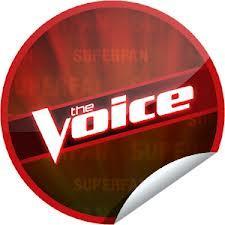 casting-de-the-voice-saison-3.jpg