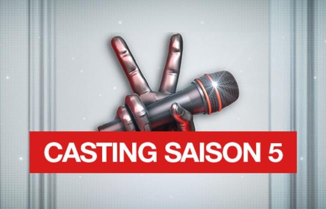 Casting les voix de la chance 2015 saison 5
