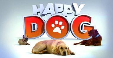 Casting m6 happy dog