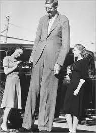 L homme le plus grand du monde robert wadlow