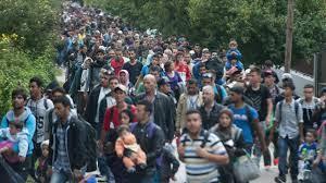 solidarité,migrant,APL,RSA,retraite,allocation,dictature,misère,guerre,Réfugiés,Immigration,aides sociales,info,news,