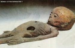 extraterrestre, découvert momifié, pyramide, étrange, paranormal, égyptologue, Louis Caparat, salle secrète, humanoïde, caisson,