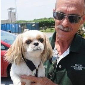 un maître, retrouve son chien, 7 ans après, disparition, insolite, Shih Tzu, Mimi, mystérieusement, incompréhension totale, recueillie,